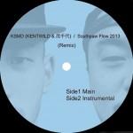 Surry-SouthpawFlow2013Remix