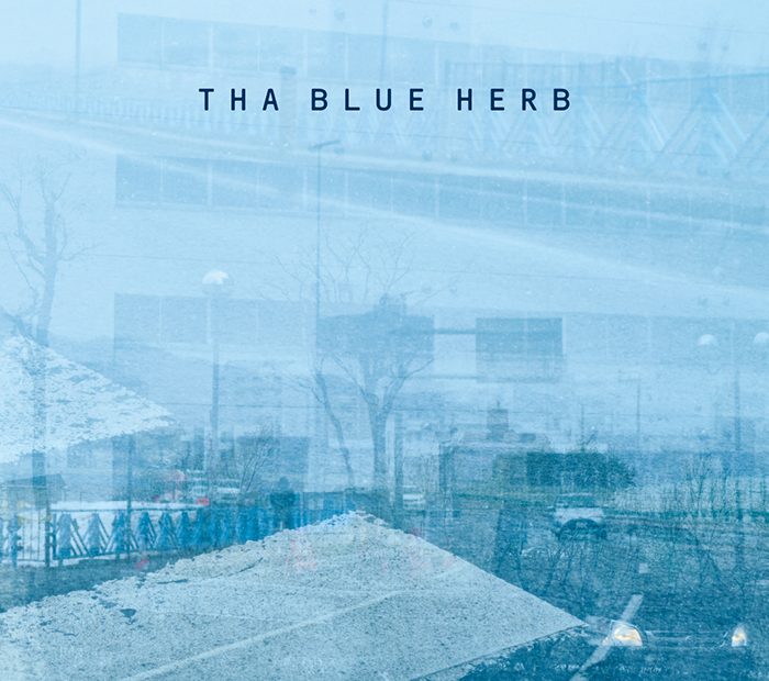TBHR-CD-031